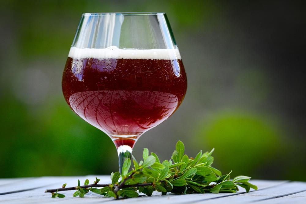 Brygning af øl med porse